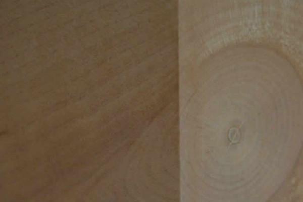 mis-10243AB2F230-201C-A8E9-3440-1789A32910ED.jpg